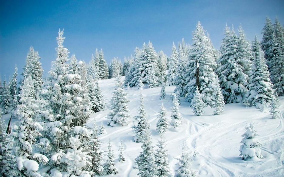 Картинки по запросу ձմեռային ջերմուկ